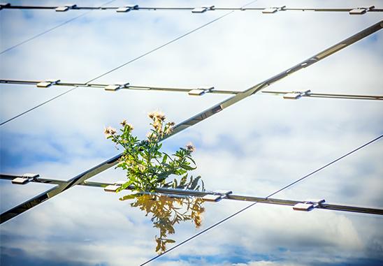 opzuid-bevordering-duurzame-energie