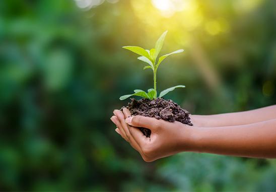 MIA- en VAMIL-subsidie: een beter milieu begint bij uw onderneming